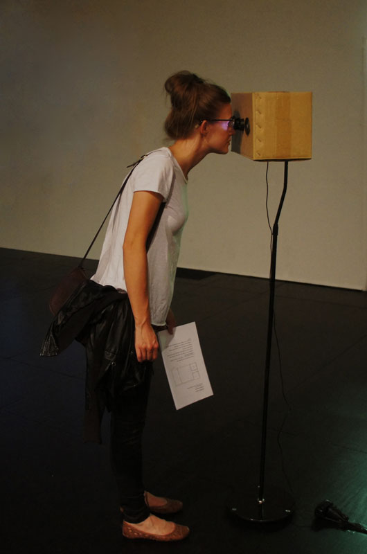 Stereostereoscope 2011  digital video, cardboard, lenses, speakers. 155x40x32cm. 8 minutes